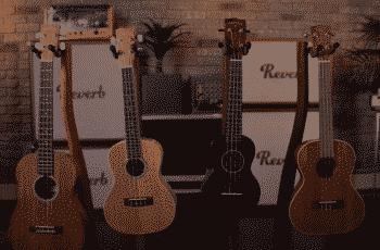 how to buy ukulele for beginners