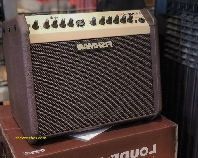Best amp 500 dollars