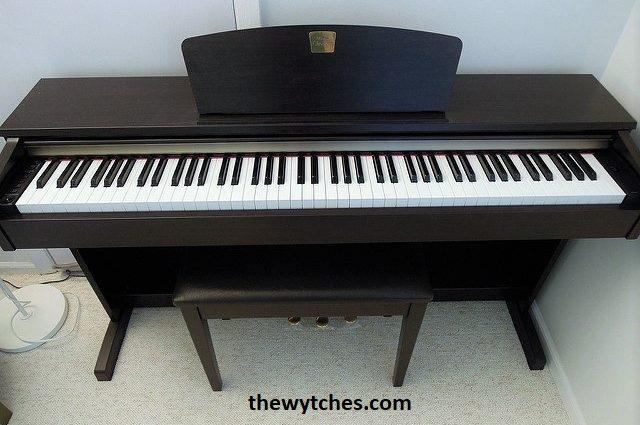 Best Starter Digital Piano and Keyboard Beginners