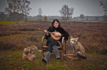 beginner mandolin